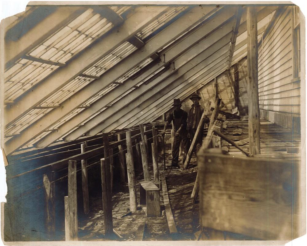 RG 120 - US657 - Farm workers 1907.jpg