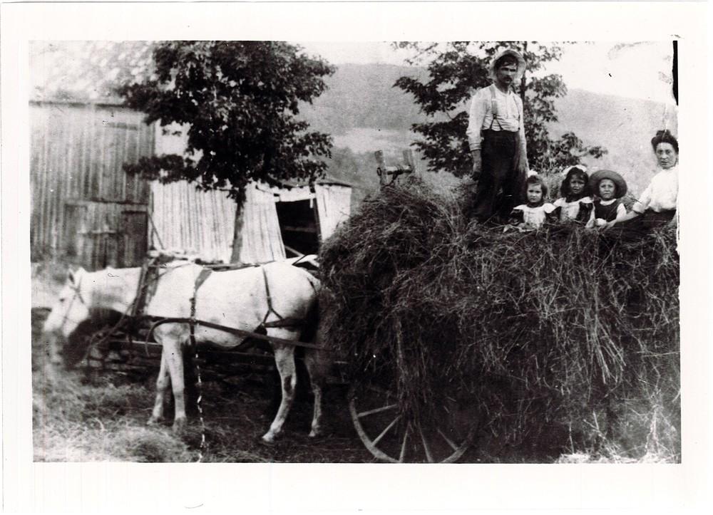 RG 120 - US741 - Levine family in hay wagon in upstage NY farm - Benjamin, Ethel, Ida, Joe, Fanny - Ellenville, NY - ca. 1906.jpg