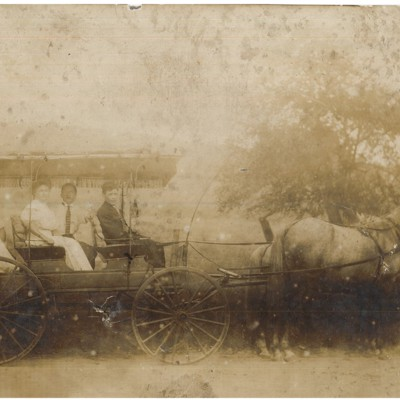 Horse Carriage in Carmel Colony