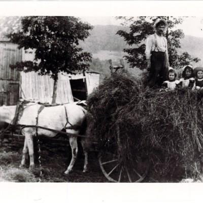 Levine Family On Their Farm